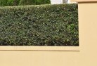 Abington QLD Decorative fencing 30